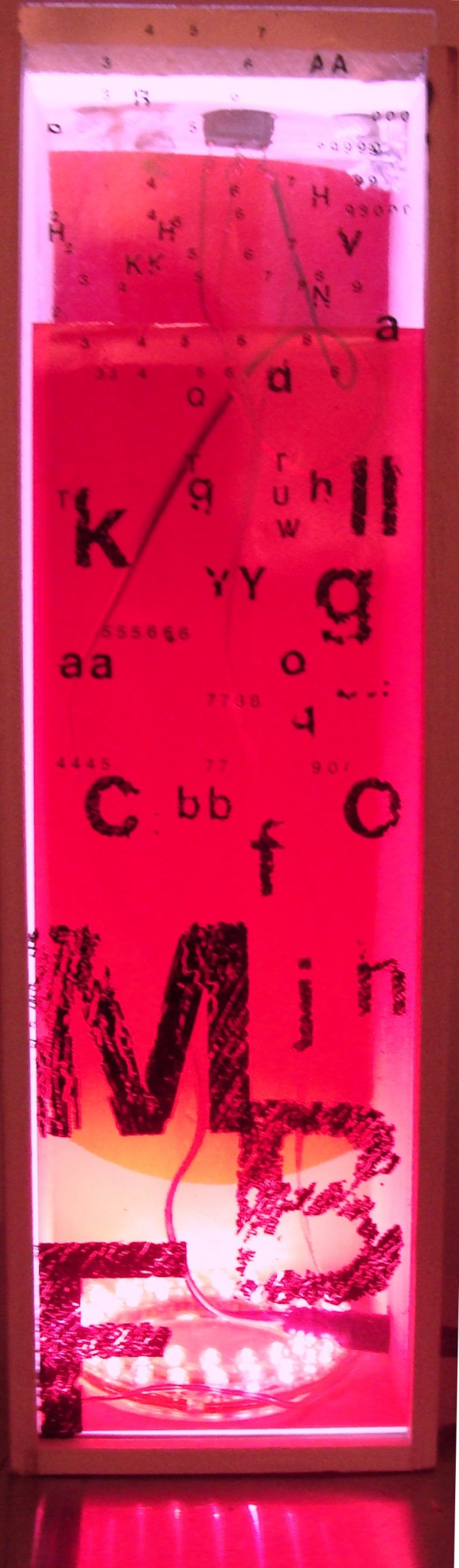 wired for language red
